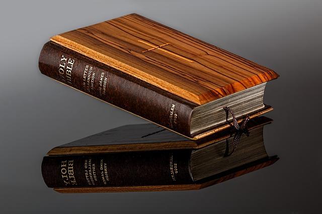 Papa Francisco alienta a leer la Biblia todos los días: Solos o en familia