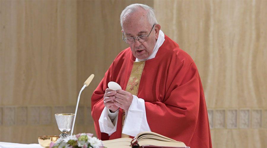 Estos son los tres pilares fundamentales de la evangelización, según el Papa Francisco