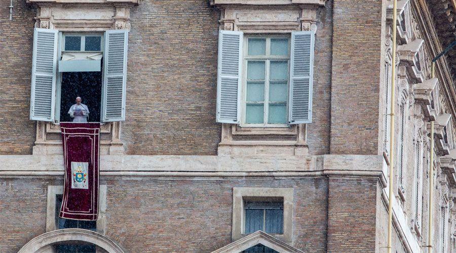 El Papa Francisco: El Sínodo de los jóvenes ha sido una buena vendimia